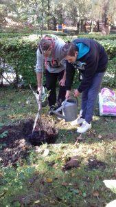 sadzenie-drzew8_resize